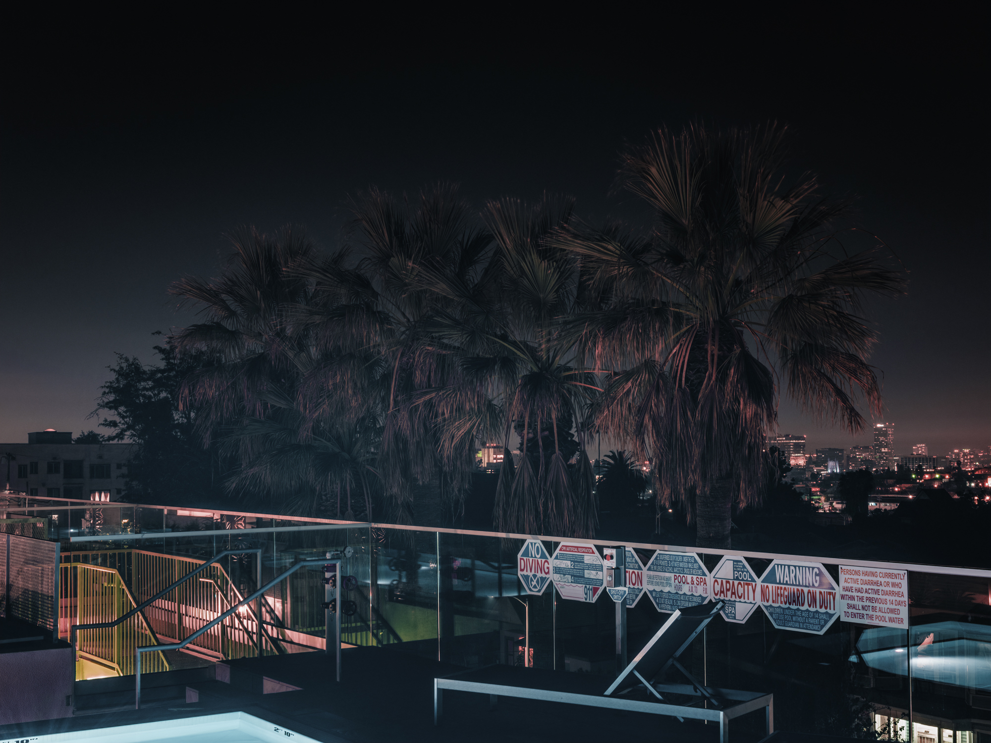 Palms from Rooftop Pool, Los Angeles, 2018.  Archival Pigment Print.   Pricing & Edition Info