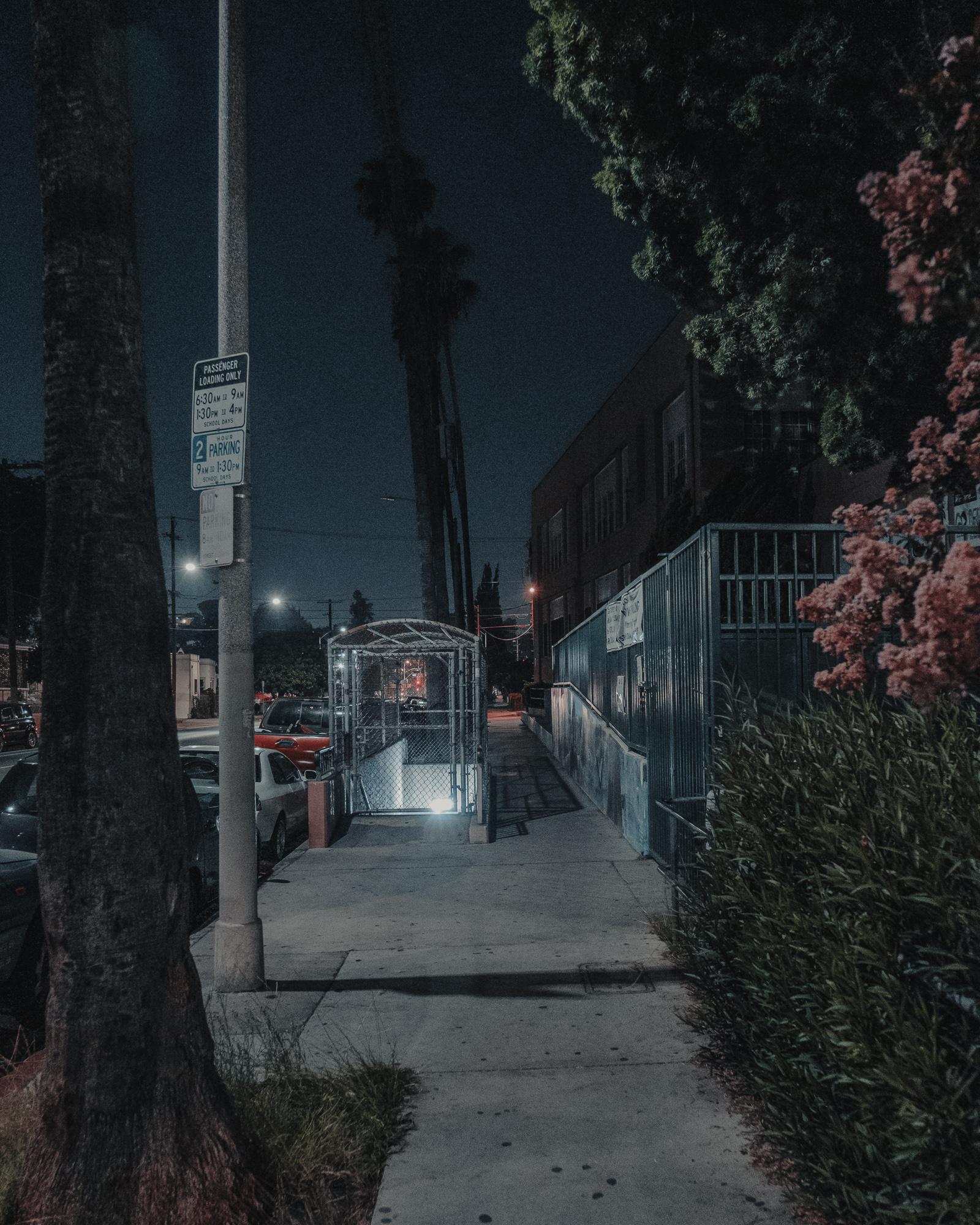 Nights-22.jpg