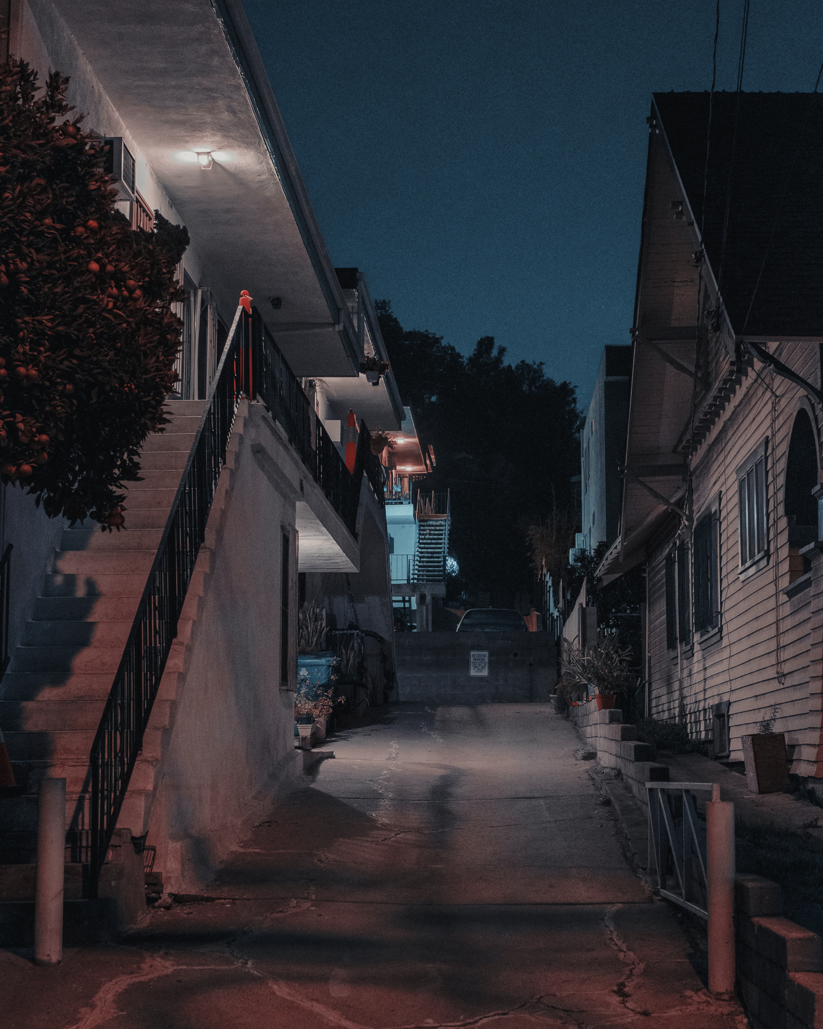 Nights-36.jpg