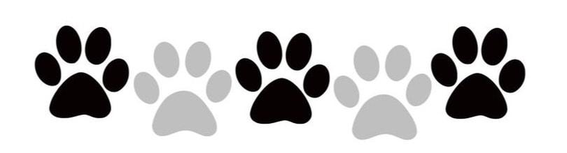 5-paws.jpeg
