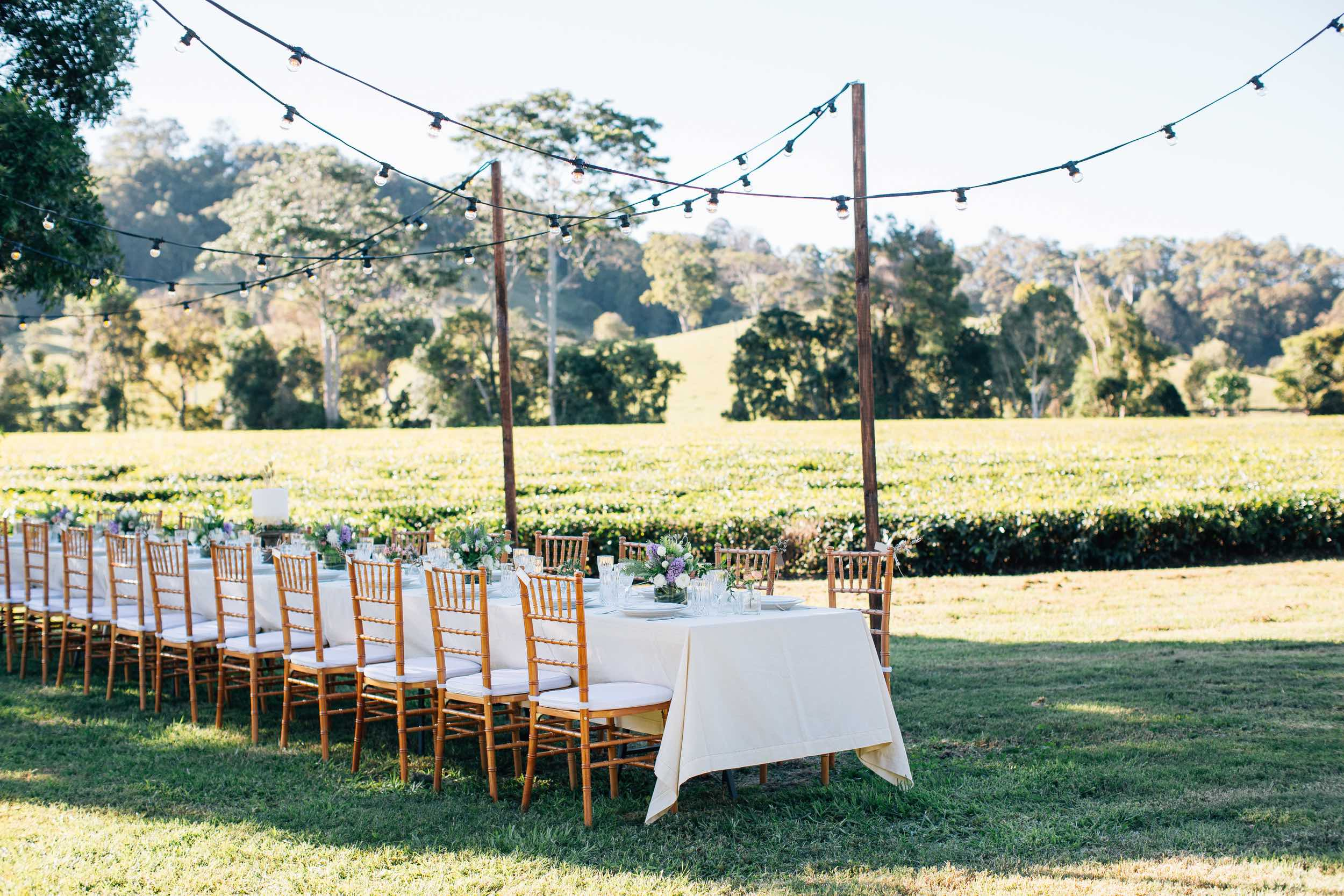 Image by Figtree Pictures / Venue at Madura Tea Estates / Planned by The Events Lounge / Lighting by Elyssium Lighting