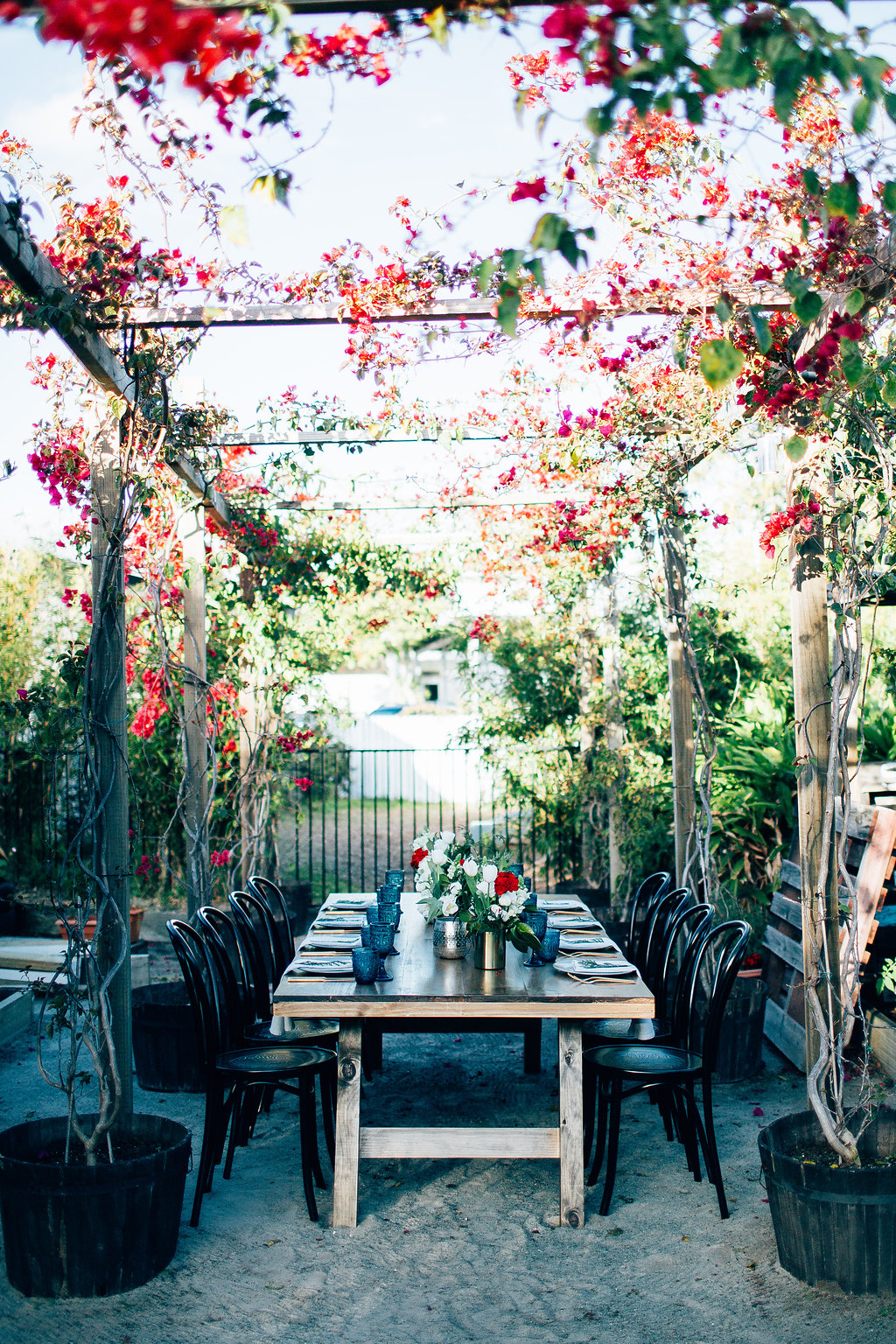 Hampton Event Hire - Wedding and Event Hire | Christmas Table Styling Inspiration at Osteria Casuarina | Black Bentwood Chairs and Feasting Tables | www.hamptoneventhire.com | Photo by Figtree Pictures