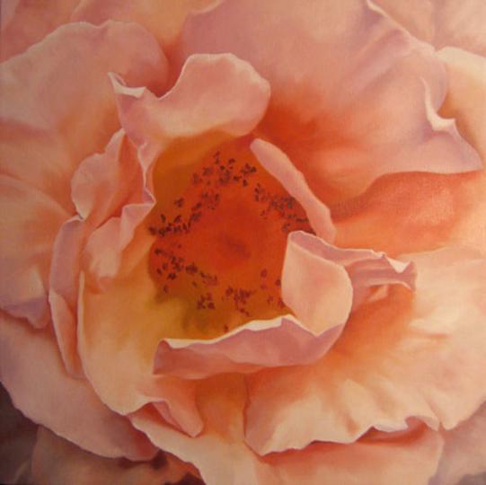 Caitlin's Rose