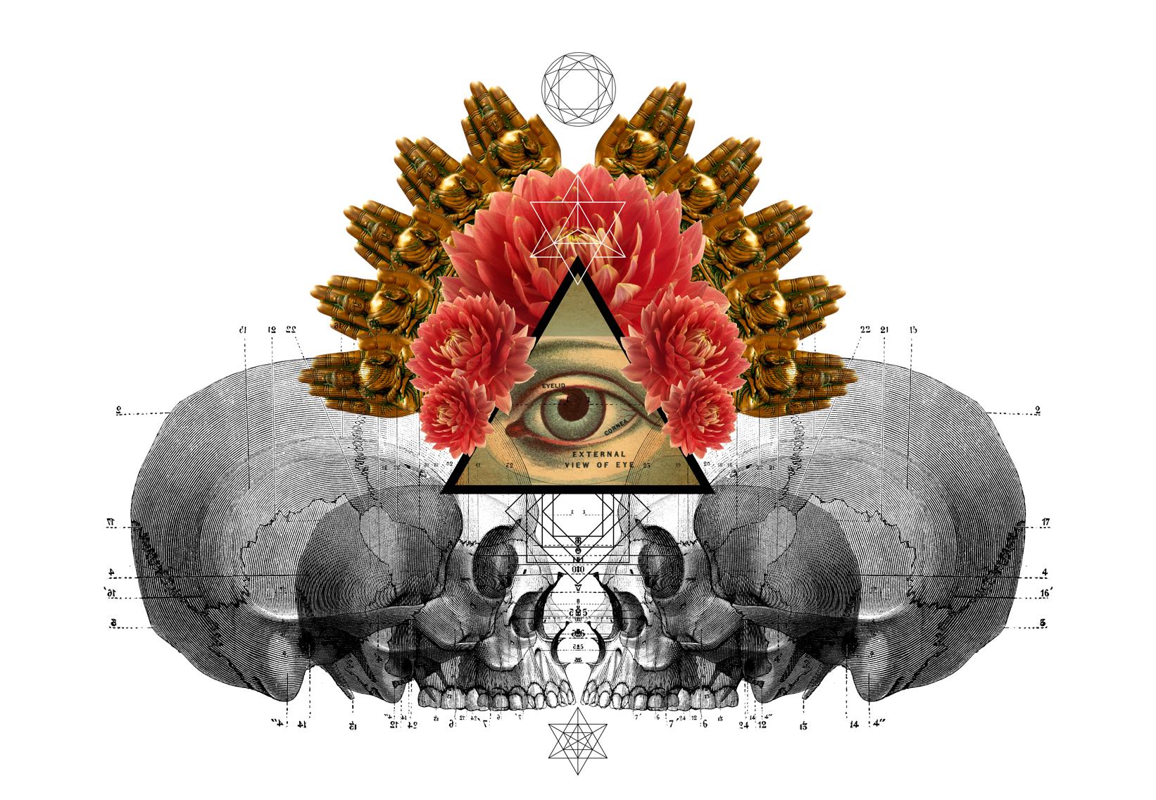 facing-skulls.jpg