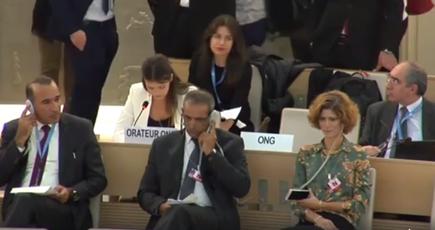 Participants attending a live UN Human Rights Council session.