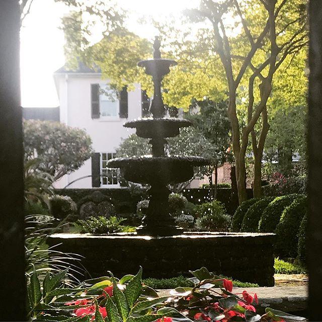 Easy like Sunday morning...Charleston's beauty is enchanting! #chs #sundaymorning #nyc  #southernliving #gardens #fountain #flowerstagram #bestofbothworlds #peeper