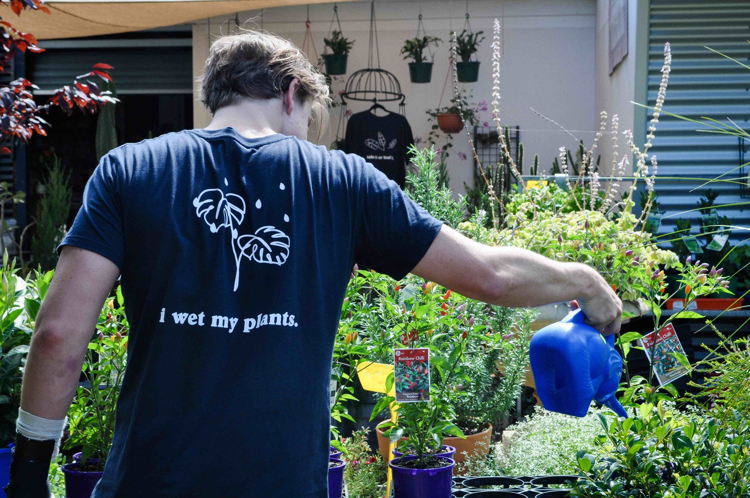 It's cool to Wet Your Plants - Just don't do it too often!Cottage Garden Tees available in store 🌿