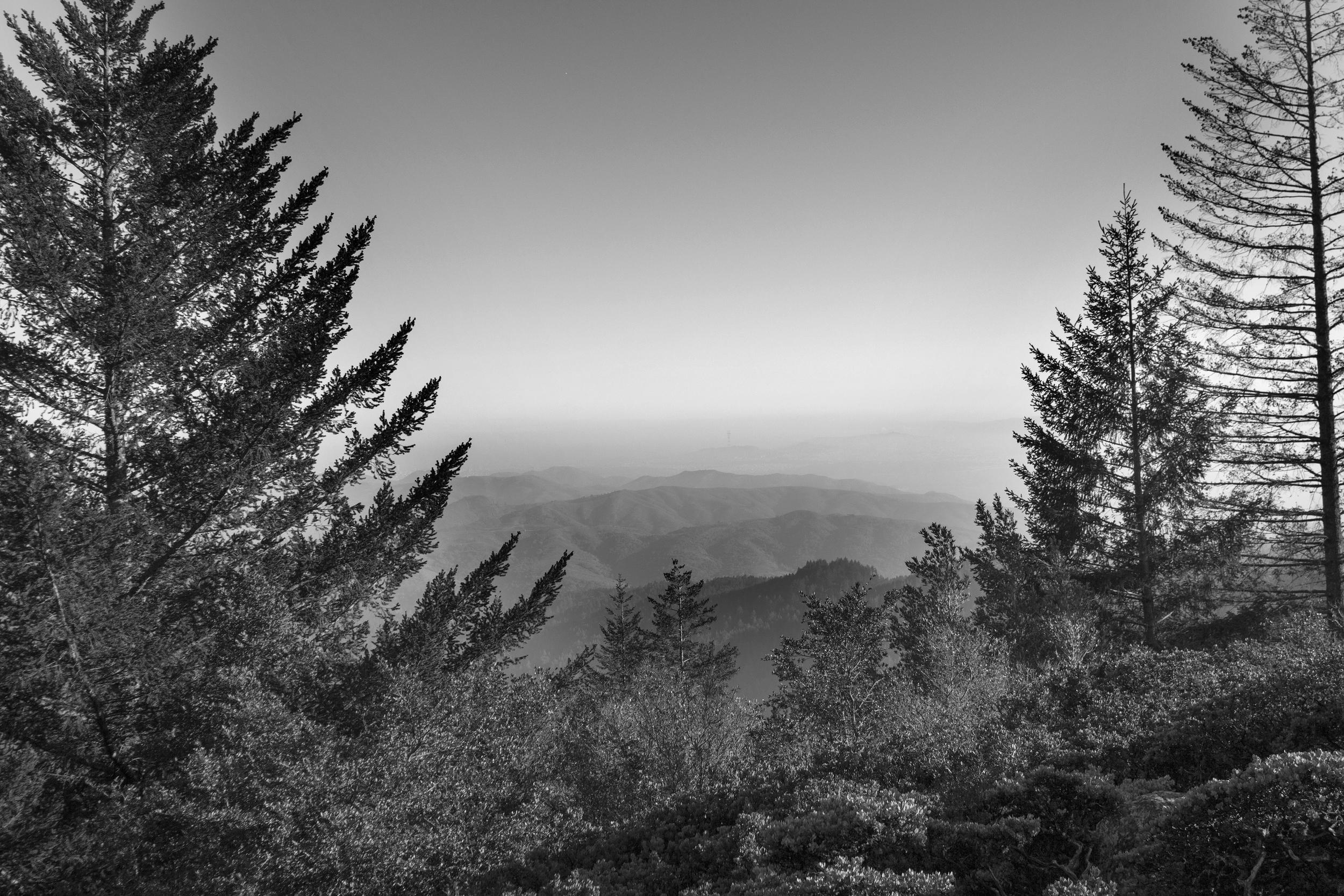 hiking Mt Tam B&W.jpg