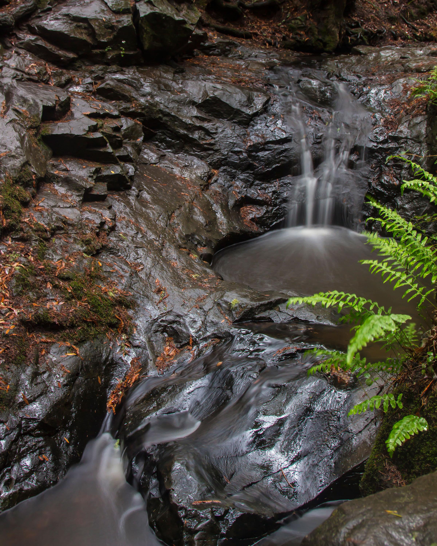 Cascade-Falls2.jpg