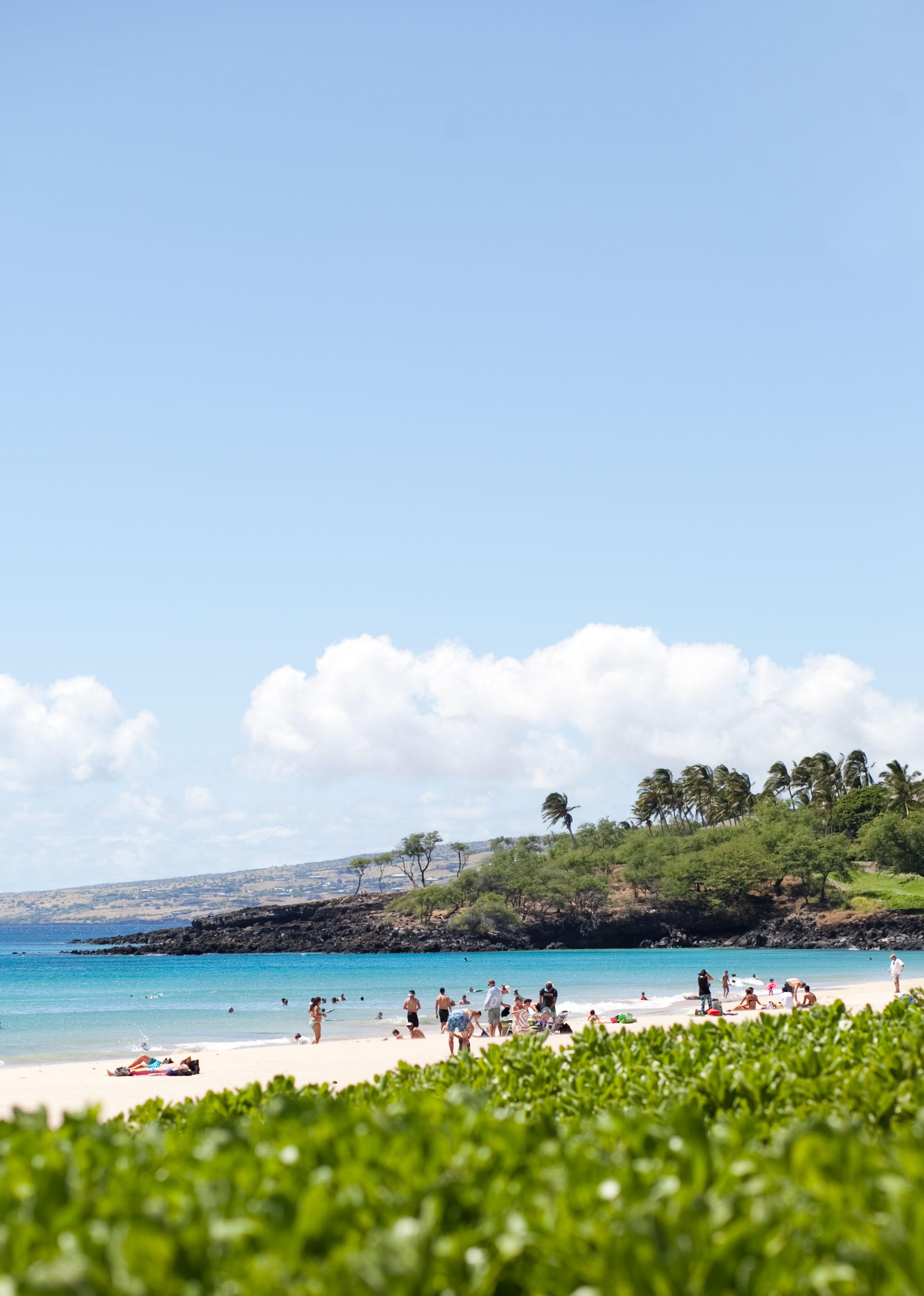 port-hawaii.jpg