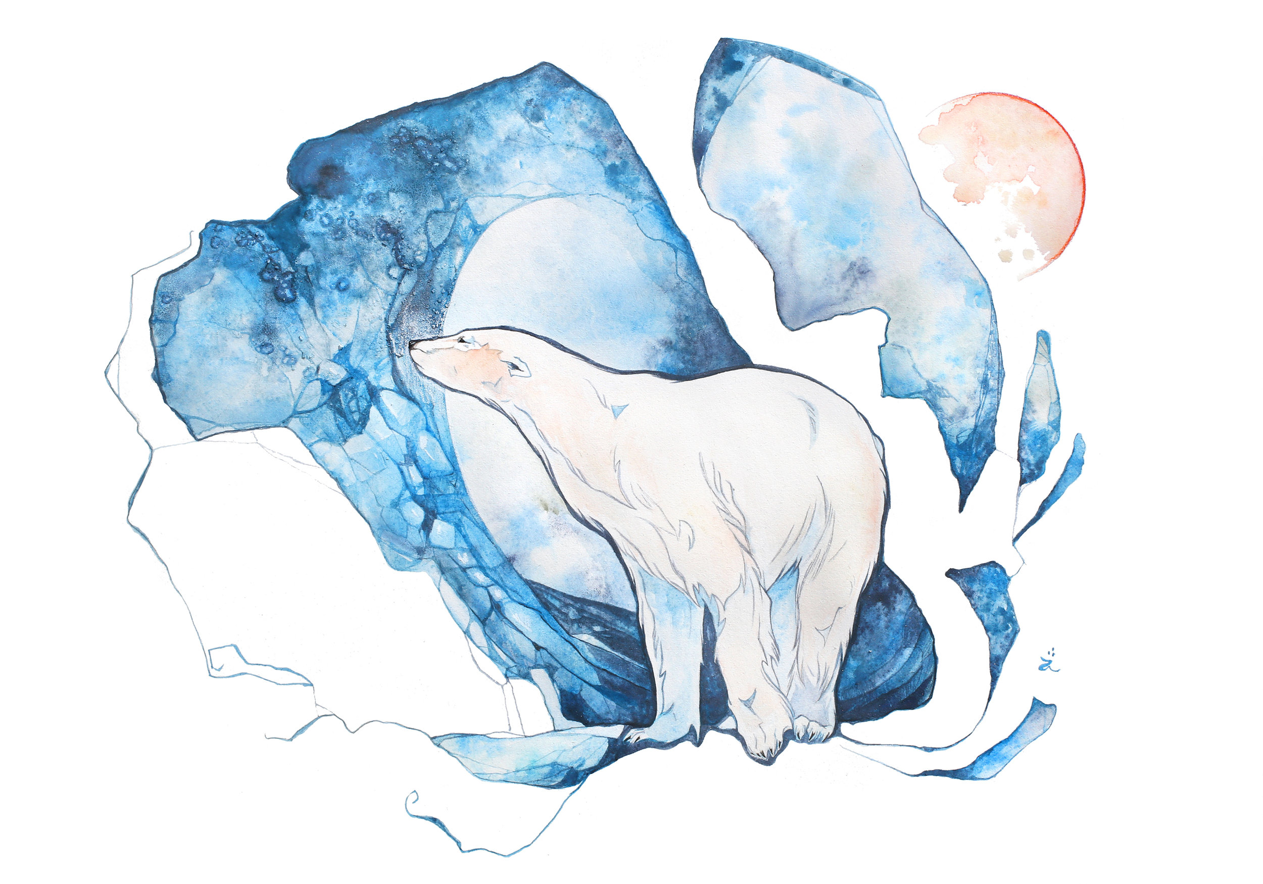 Polar_bear_7x10_300.jpg