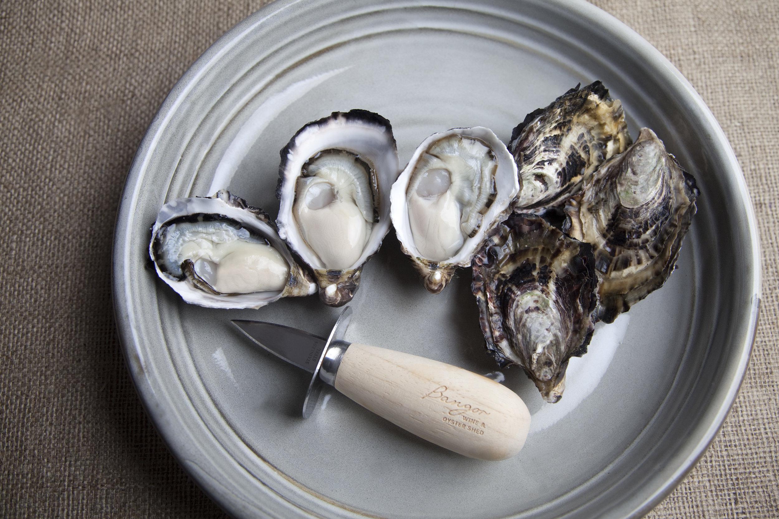 GreyOysters.jpg