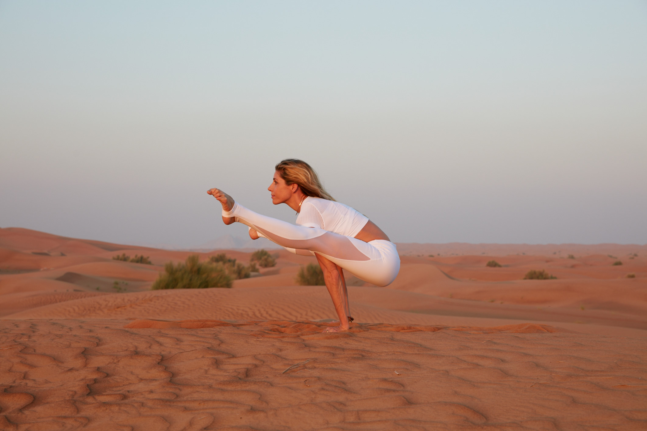 Dubia, Red Dunes