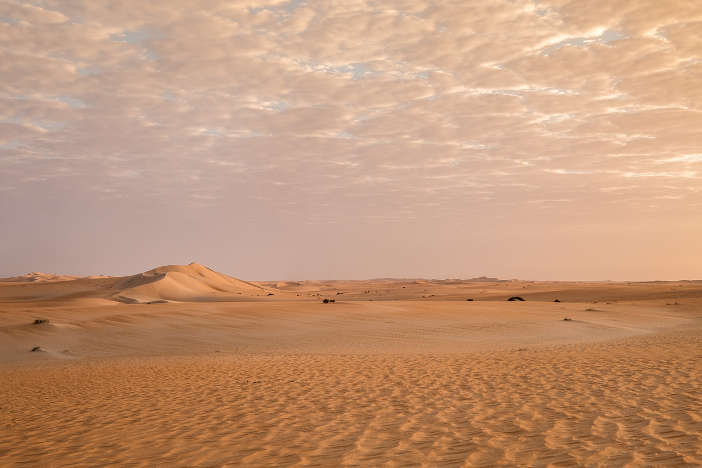 Rub_al_khali_sand_dunes_saudi_arabia_sim_davis.jpg
