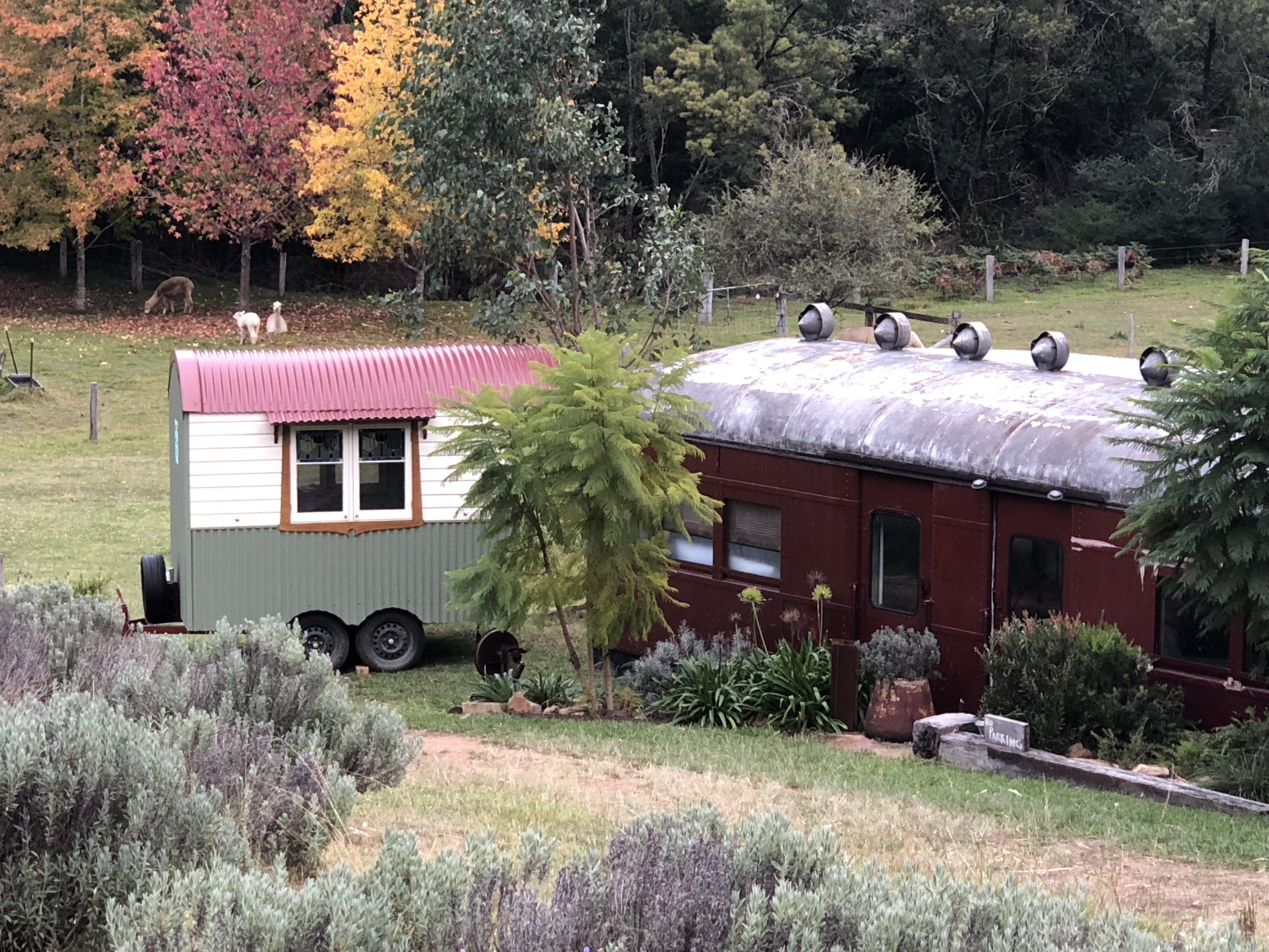 Hut & Train - Perfect pair when a group of upto 4 people book at Little Valley Farm.