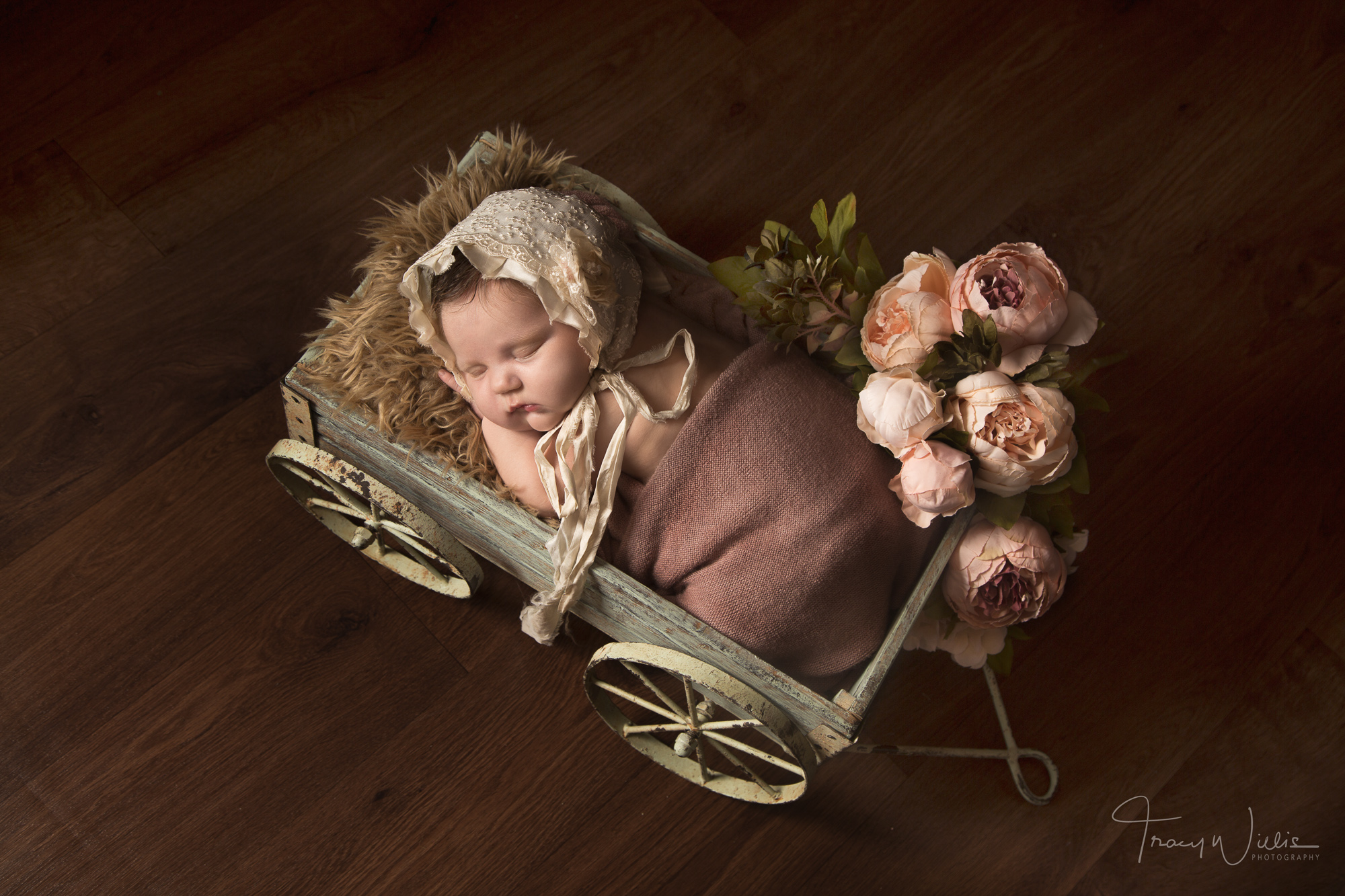 Newborn baby in cart by photographer covering Bournemouth and Poole, Dorset