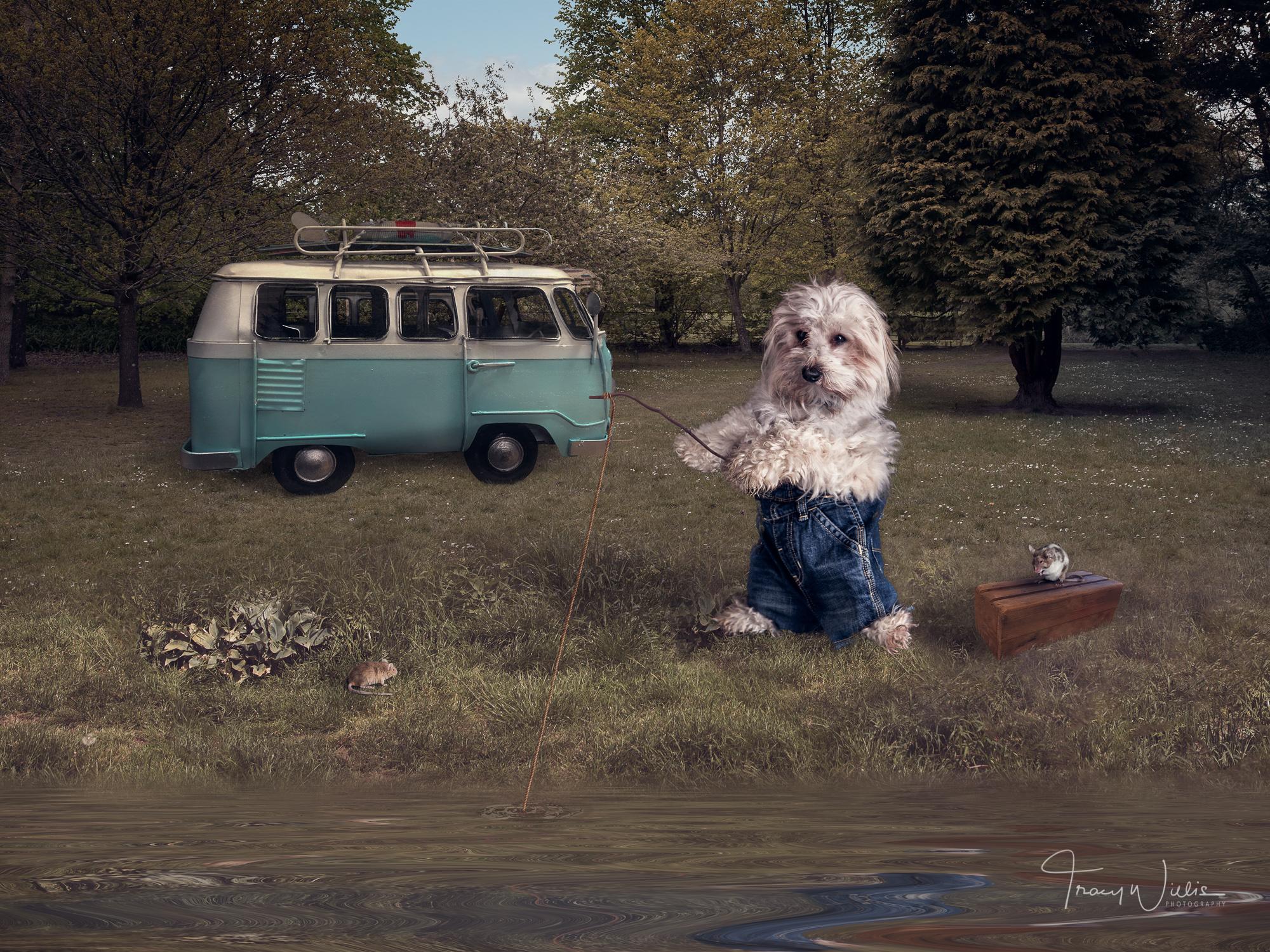 Tracy Willis Fine Art Photography Bournemouth-16.jpg