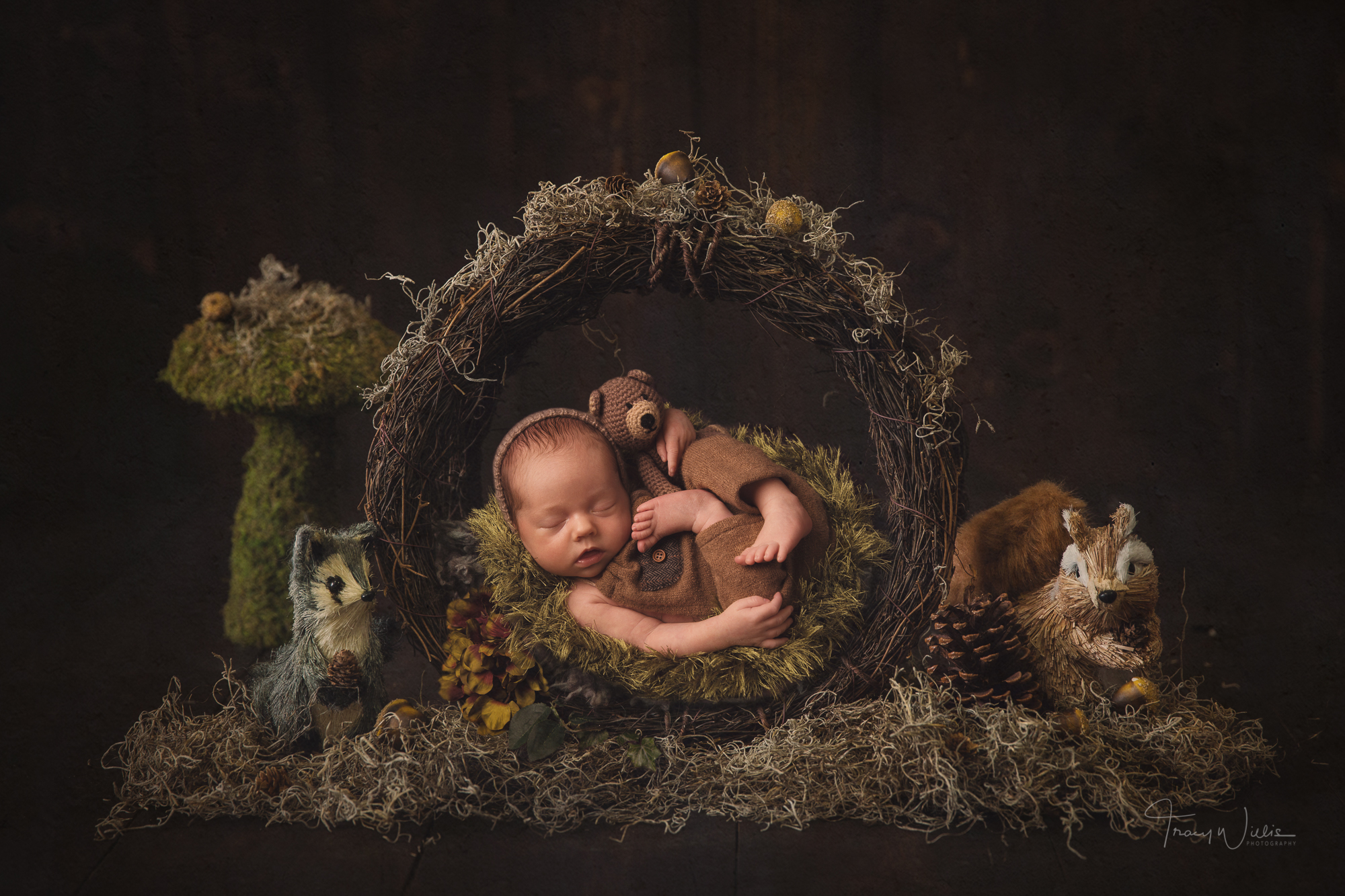 Newborn and baby photography and training