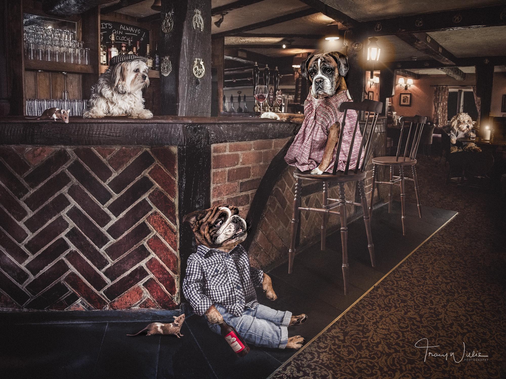 Tracy Willis Fine Art Photography Bournemouth-9.jpg