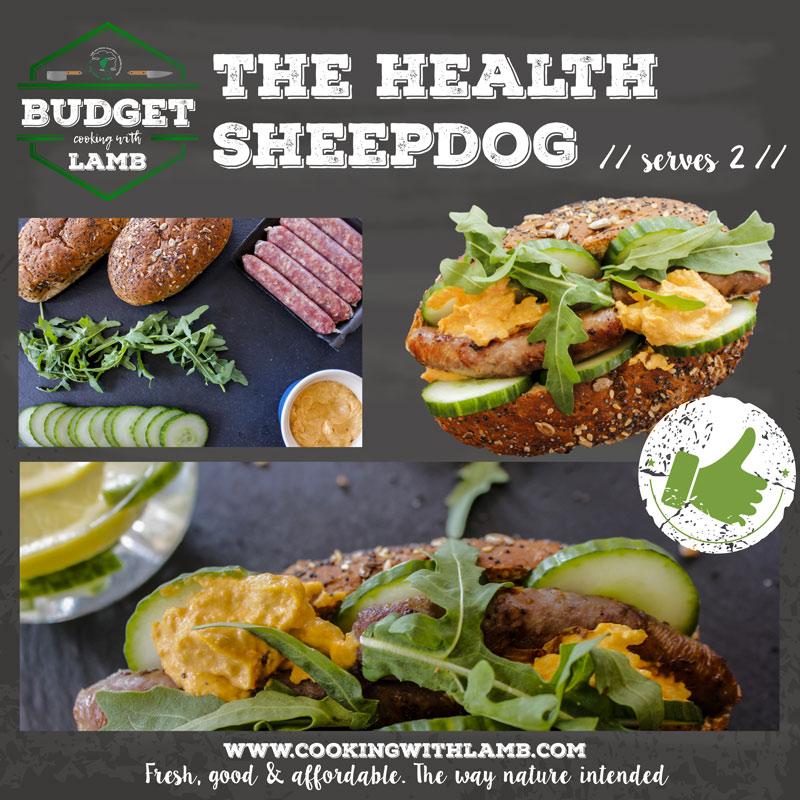Health-sheepdog2.jpg