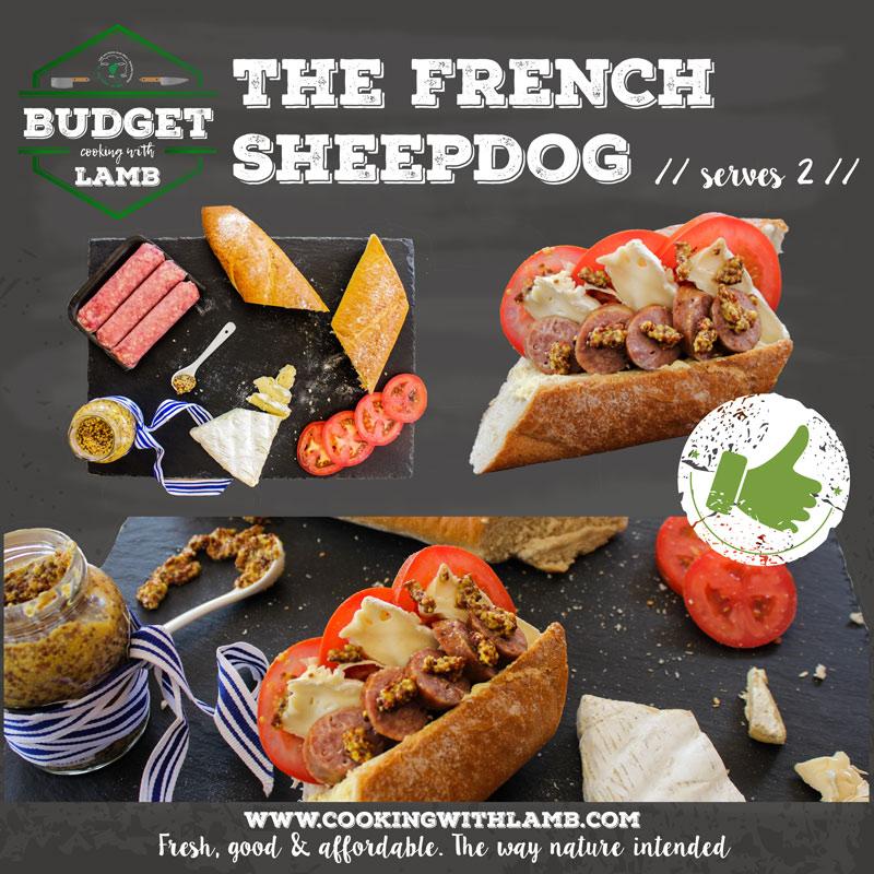 French-Sheepdog-.jpg