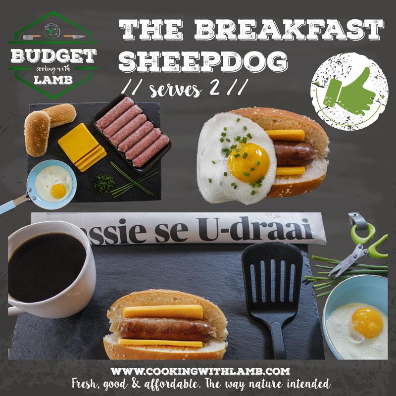 Breakfast-Dog-.jpg