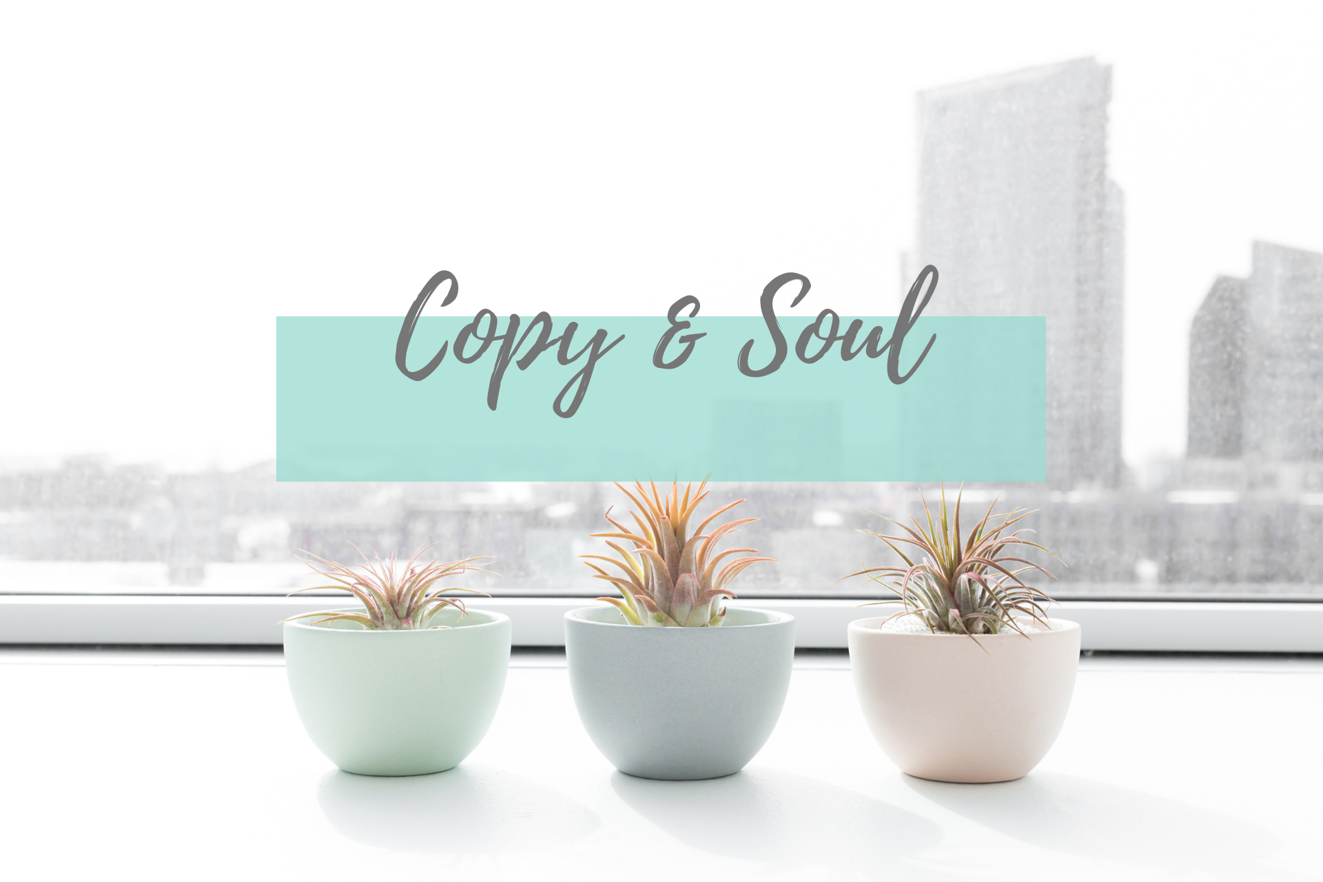 copy and soul