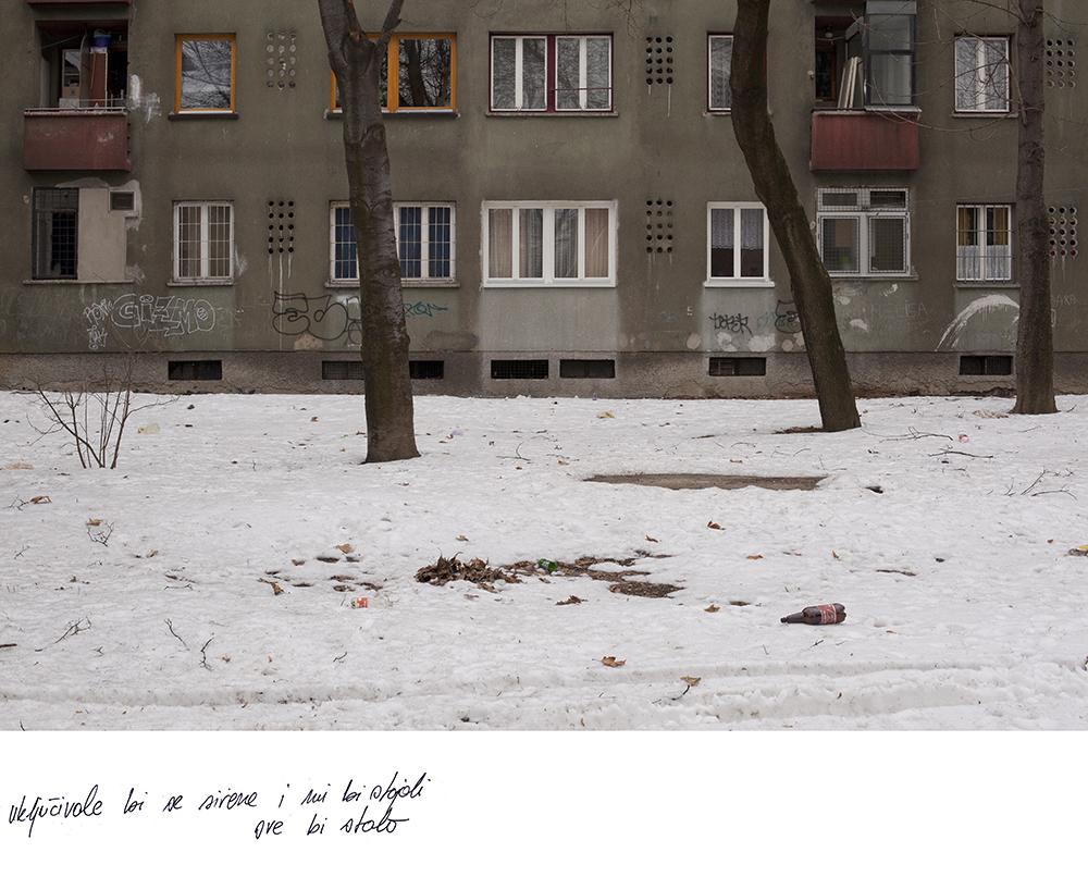17_davor_konjikusic_genogram.jpg