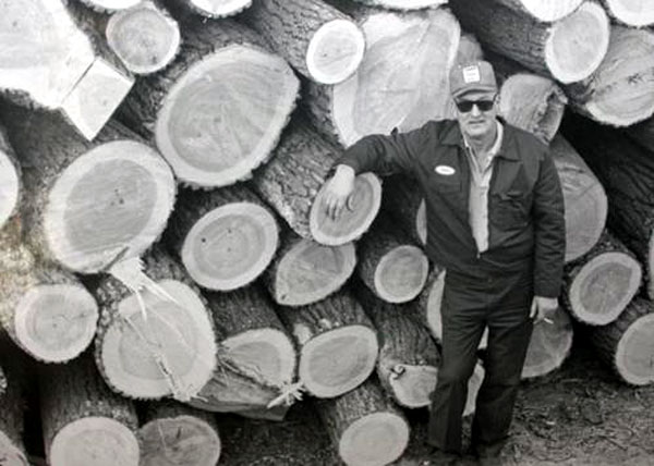 Family owned and operated - Owner Donald Barcel standing next to a pile of Cottonwood logs his crew cut down.