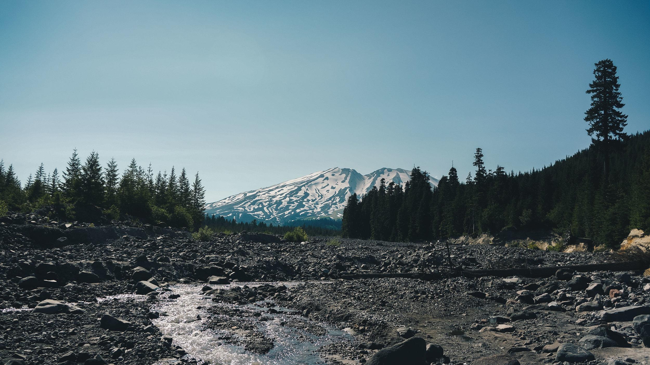 Mt. Saint Helens near Gifford Pinchot N.F.