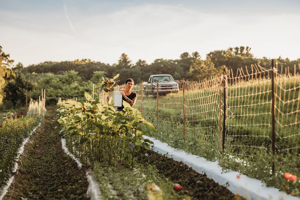 - Field Edge Flowers was started in 2015 by Mel Hardy and Paulette Jenner; a friendship that began on vegetable farms on the edge of Boston turned into a shared dream of growing organic cut flowers for homes, businesses, and special occasions in all corners of our community. At the conclusion of 2016, our first growing season, Paulette left the farm to pursue non-farmy work. At the same time, Mel had some other aspects of life to focus on; thus began a short hiatus for the business. After a couple of years of planning and dreaming, Mel has reopened Field Edge Flowers for the 2019 growing season.With over two decades spent working in horticulture, including several years as a professional grower of vegetables, flowers, and berries, Mel brings extensive crop production and management experience to Field Edge Flowers. For all their mystique, flowers are, after all, still just another crop. Mel focuses on using tried and true, sound and efficient growing techniques to bring beautiful, healthy, organically-grown flowers fresh to market so that everyone can experience the joy of long-lasting bouquets grown in their own community.Despite her knack for efficiency, it's impossible to ignore the magnetic and magical pull of flowers, and being an artist, Mel is never too busy to slow down and take a look at an especially perfect dahlia or delphinium. The name of this business was inspired in part by the beauty and joy Mel found in the details of managing community farms that are often seen as peripheral and nonessential in utilitarian-centric vegetable production culture—namely the PYO flower and herb gardens. It was clear from the experiences that she witnessed in those gardens that there was deep sustenance provided not just by the food that she grew, but by the flowers and herbs she helped to produce as well. Beautiful, abundant blooms and greenery can bring people joy in happy times and comfort in sadness, and they remind us that all humans are connected to and affected by the natural world.This is a small business, and it's just Mel (and sometimes her partner and friends) in the field planting, caring for, harvesting, and arranging your flowers from seed to bouquet. She does this work because she believes in the value of producing ethically grown flowers, and because she truly loves bringing beauty into the world. If you're interested in what she does, and how she does it, please reach out! She's always happy to talk about flowers.