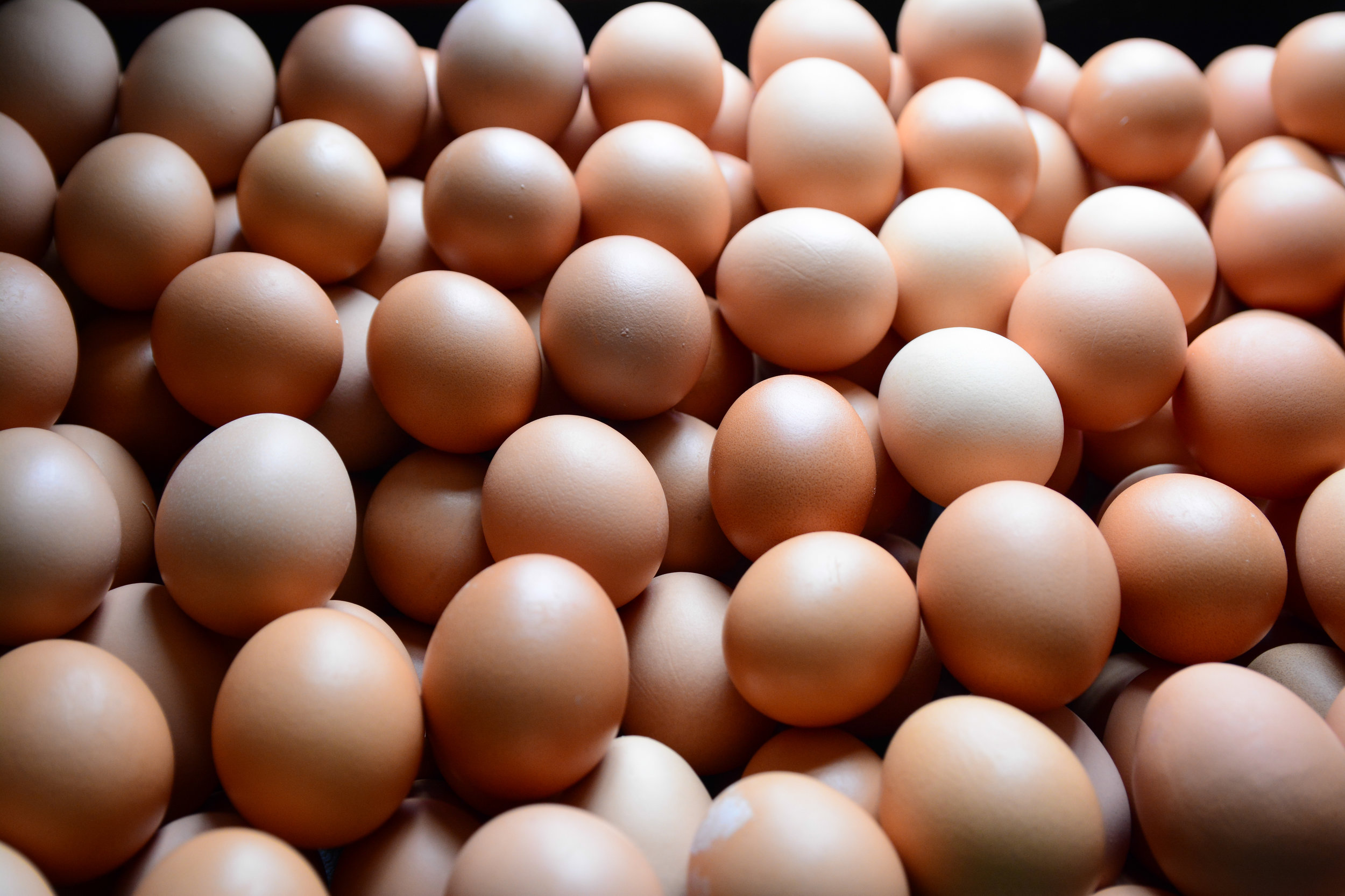 Eggs, ready to go in the carton