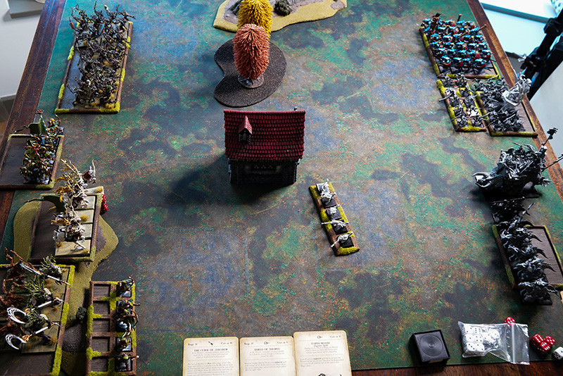warhammer-fantasy-battle-report-lizardmen-vs-wood-elves-deployment