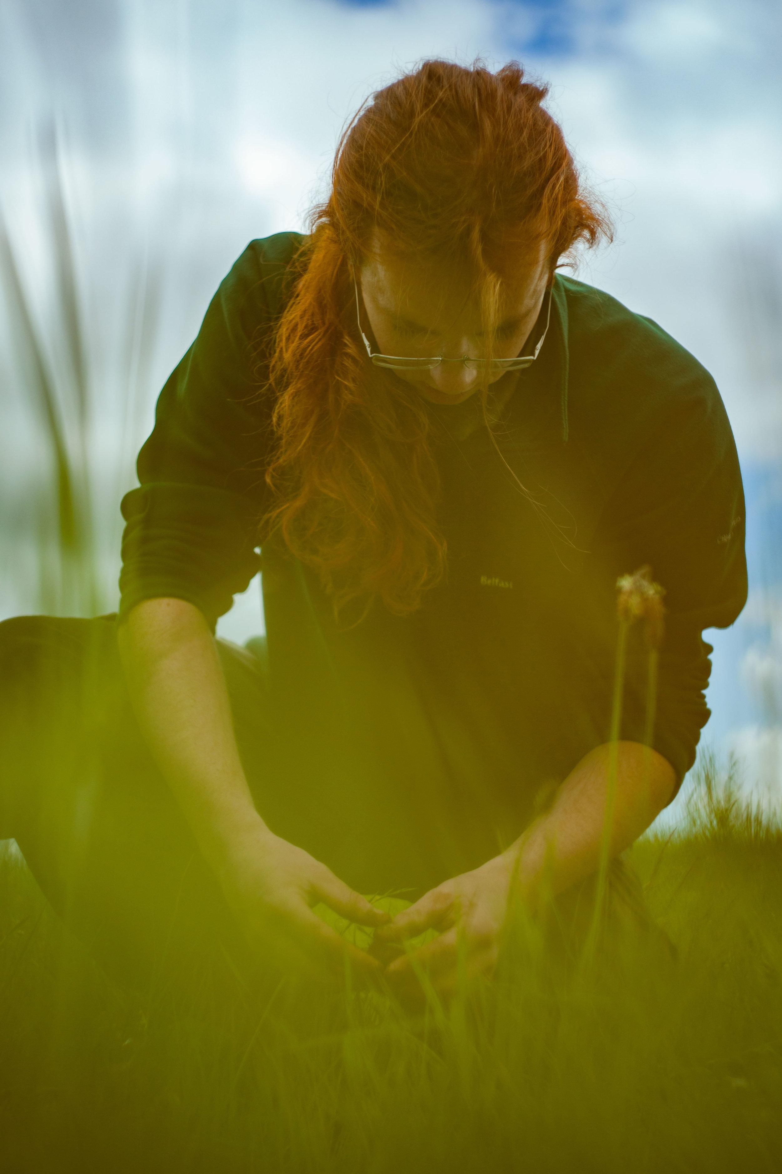 Neds-meadow8.jpg