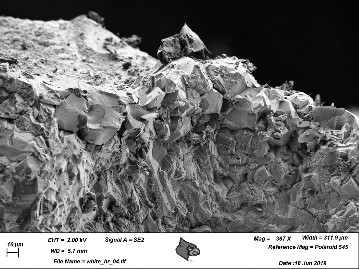 - Image by: Jasmin BeharicImage Title: Petrified WoodImage description: SEM Image taken at the Micro Nanotechnology Center, University of Louisville. Petrified wood is fossilized remains of vegetation that has transitions to stone over thousands of years. This particular piece of petrified wood was imaged for the local artist
