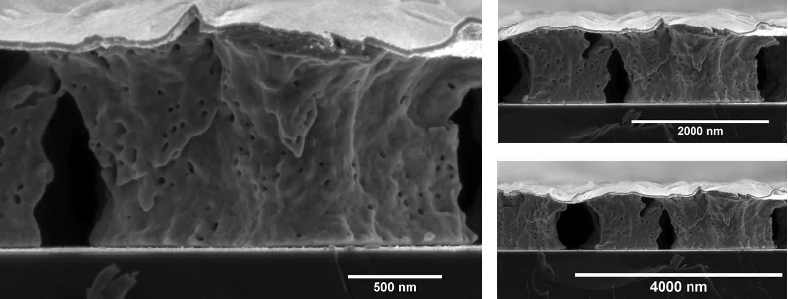- Image by: Maria KosmidouImage title: Nanoporous Niobium Thin FilmImage description: Cross section of Nanoporous Niobium thin film (approx. 1 micron of thickness), fabricated after Vacuum Thermal Dealloying Technique from a Magnesium based precursor alloy (at. % Mg75Nb25) via Physical Vapor Deposition. Figure contains three frames in different magnifications indicating both the nanoscale (higher magnification) and the microscale porosity (lower magnification). For the sake of homogeineity, a thin dense layer of Niobium has benn deposited on the top of the nanoporous film.