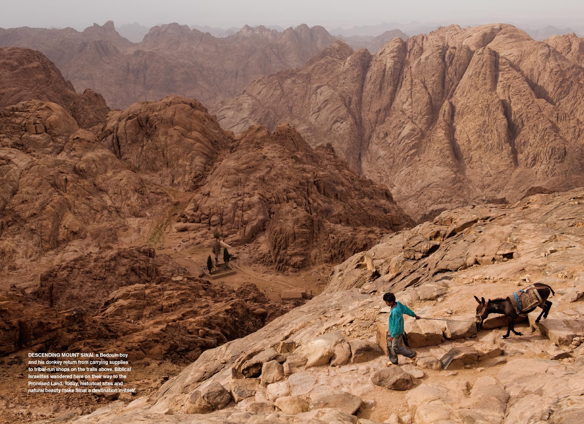 Sinai MM7615-10.jpg