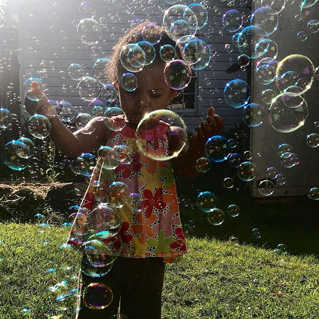 Everyone needs a bubble machine #backyardbubbles #home thanks @snarlakarla