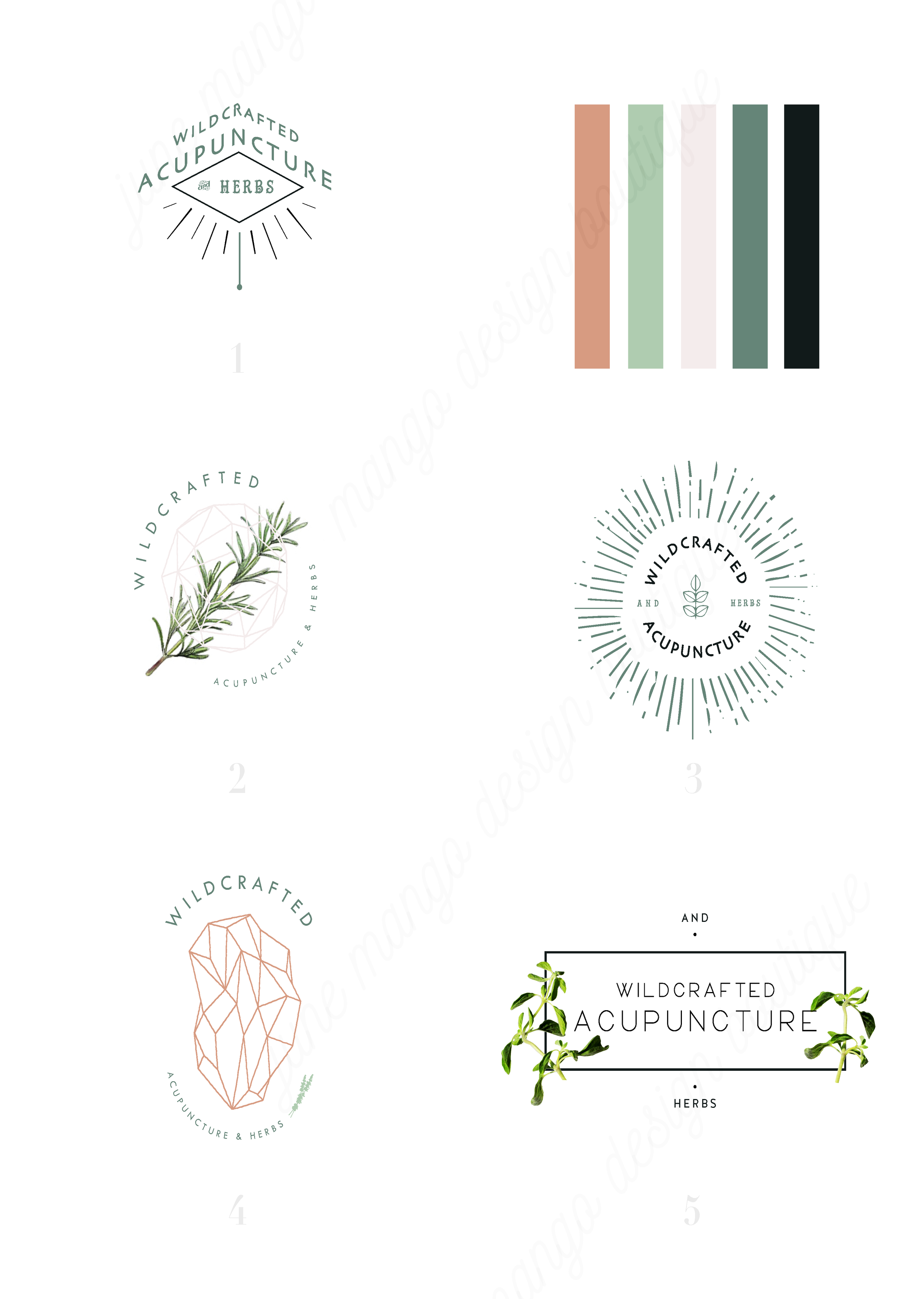 Wildcrafted-Acupuncture-Logo-Process-Branding-june-mango-design.png