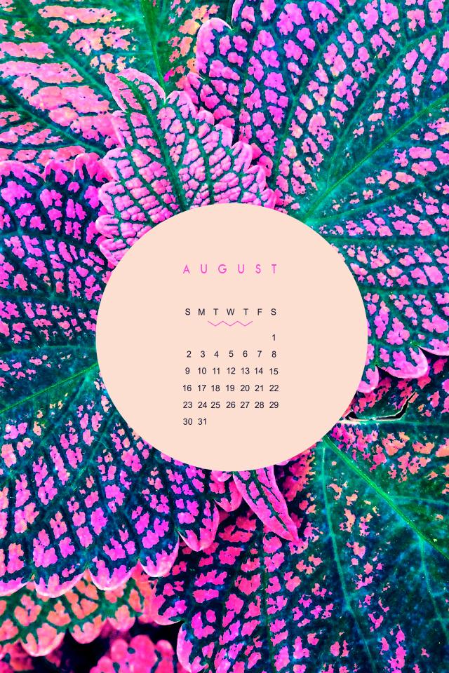August-iphone.jpg