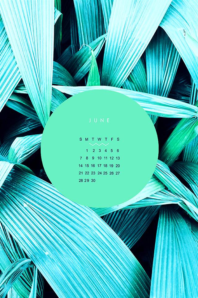 June-iphone1.jpg