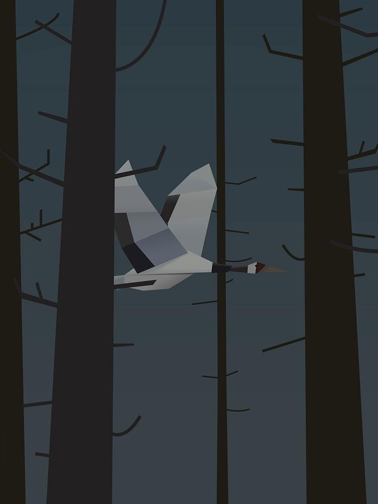 bird-rq.jpg
