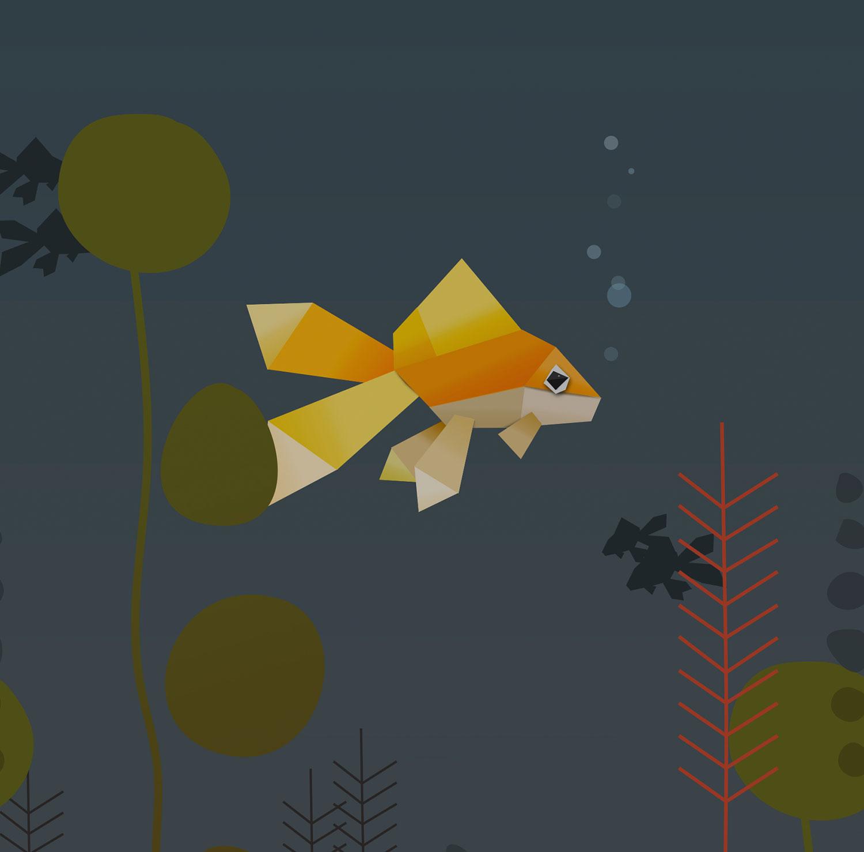 fish-sq.jpg
