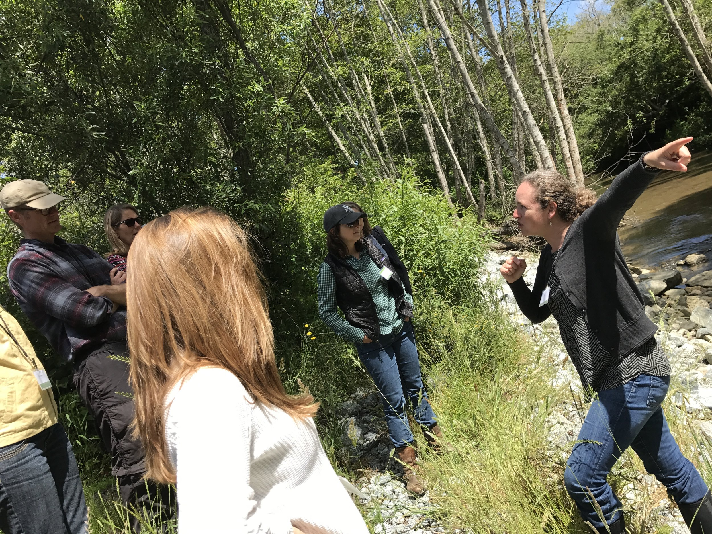 Irina Kogan of the San Mateo Resource Conservation District highlights aspects of a stream restoration project in Pescadero. june 9th, 2017.