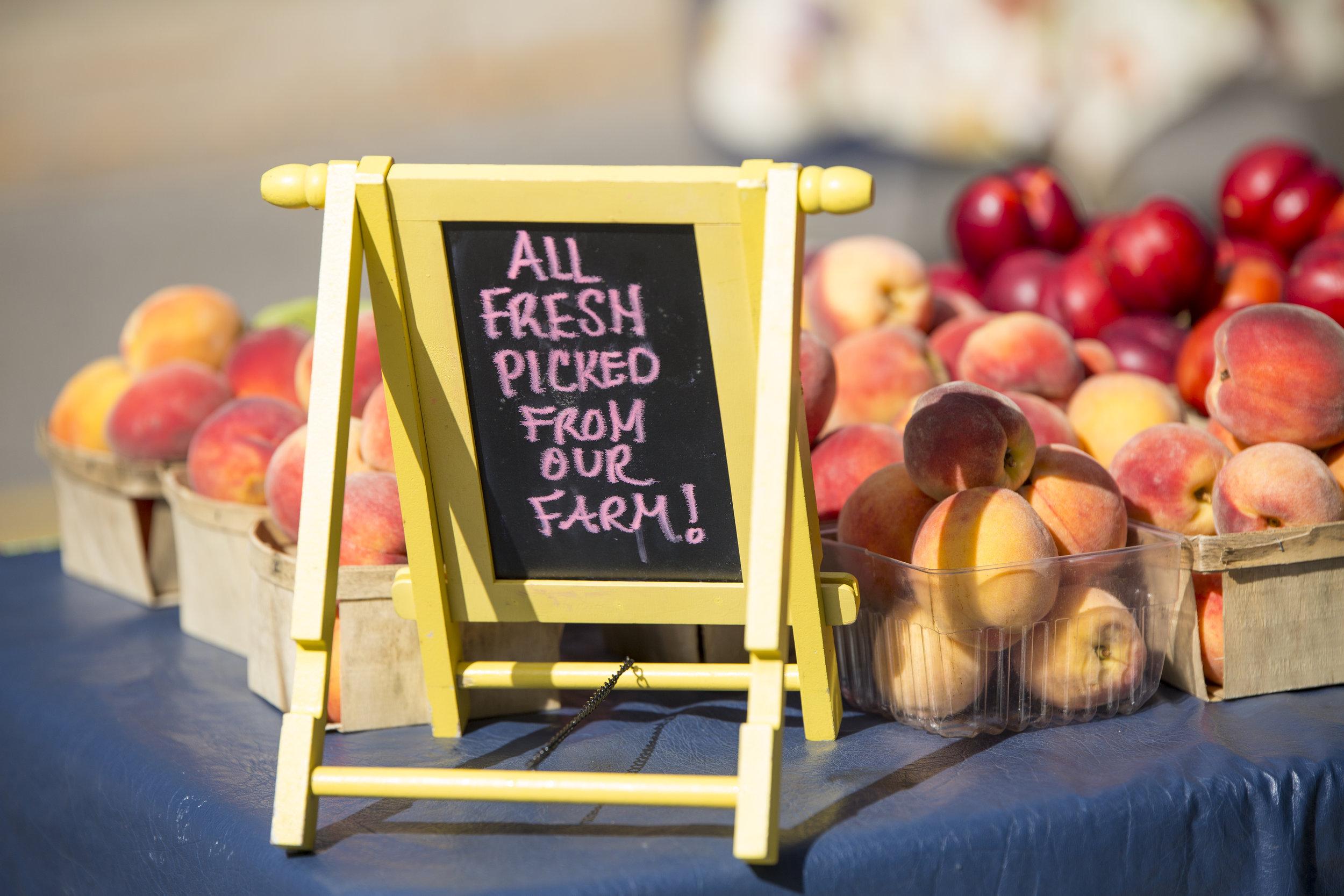 Farmers Market Goods-14.jpg