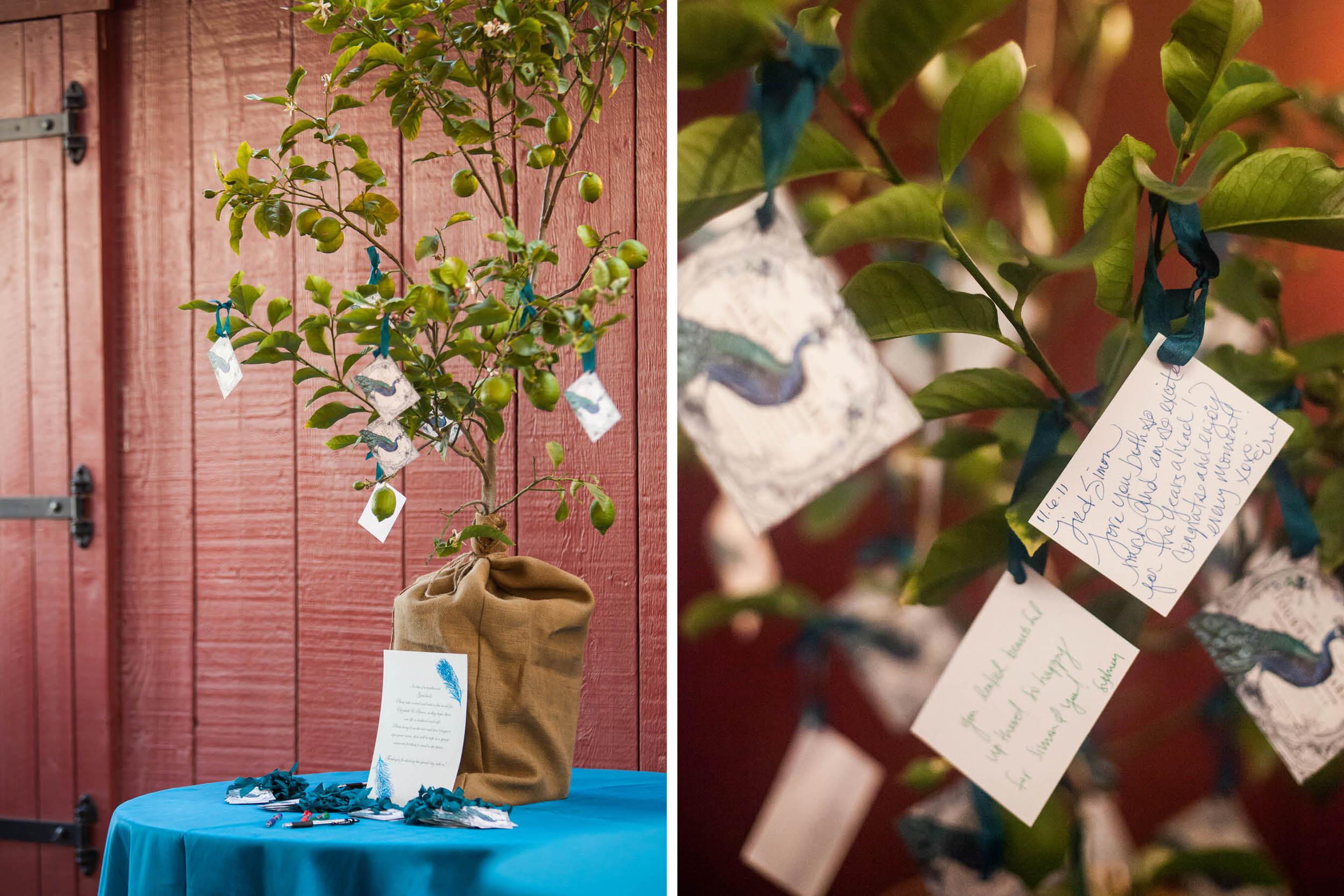 tres-hermanas-winery-vineyard-wedding-planner-coordinator-santa-barbara-ynez-maria (14).jpg