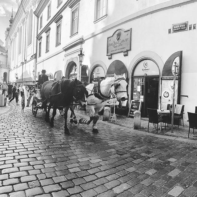 PRAGUE ✨