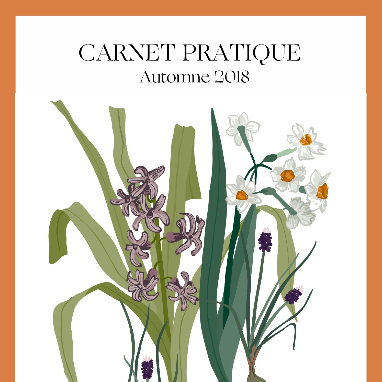 REGAIN Magazine — Carnet pratique -