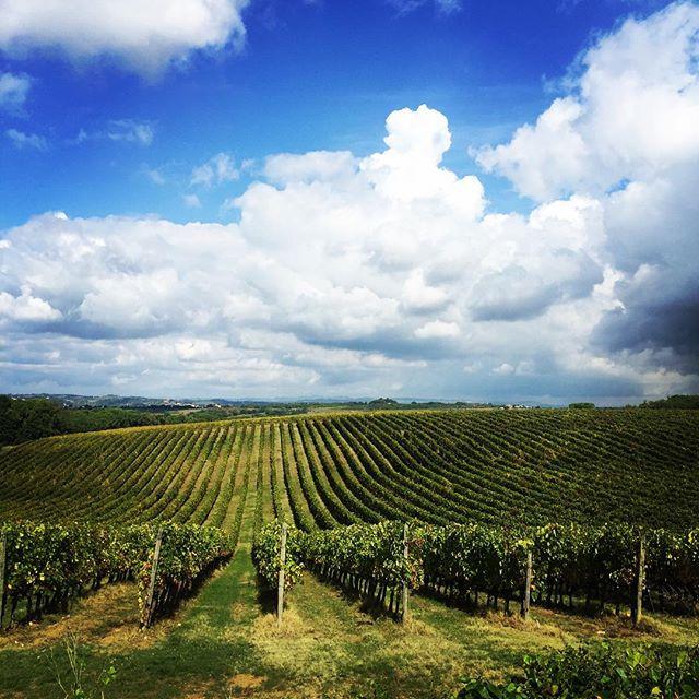❤️Tuscany... #Tuscany #Italy #wine