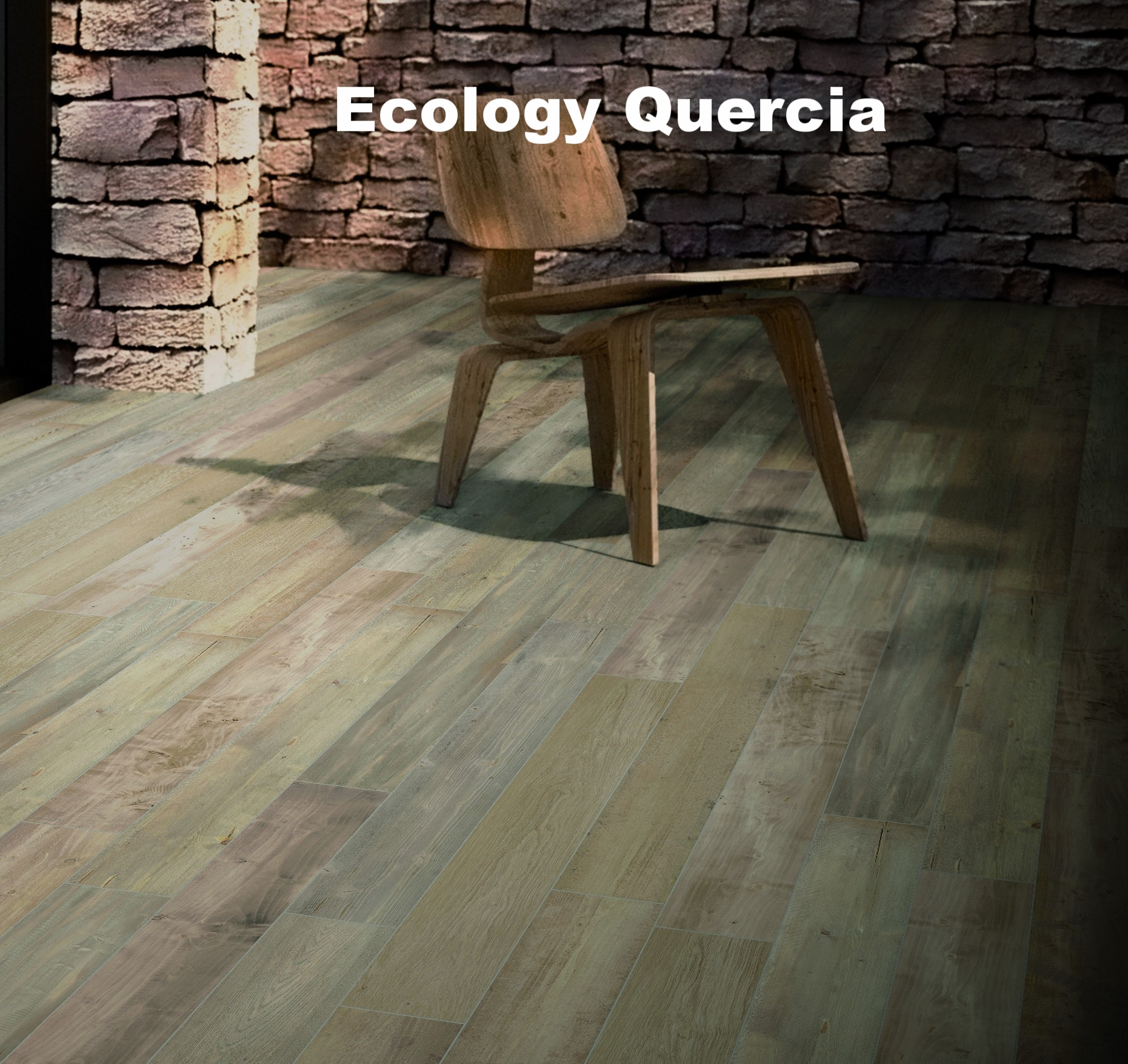 ECOLOGY QUERCIArm.jpg